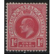 1904 NATAL KE 1d MNH